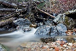 20071117_Bass_Creek_04.jpg